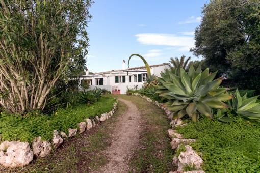 Grundstück mit kleine Finca in Binisaida