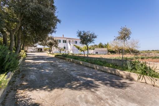 Einfamilienhaus in Alaior mit Grundstück, Obstgarten und Pool