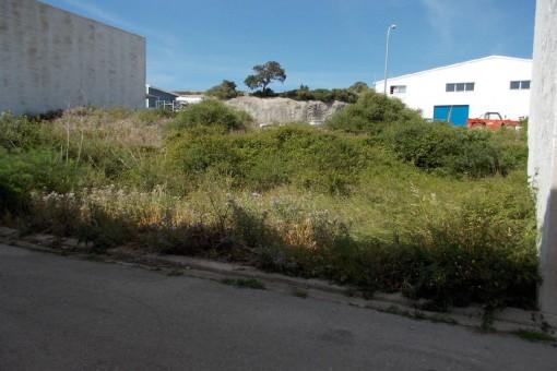 Zwei nebeneinanderliegende Grundstücke im Industriegebiet von Alaior