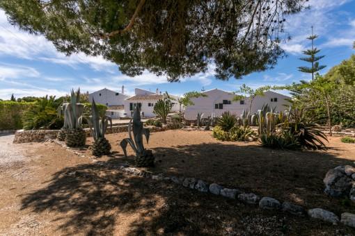 Mediterraner Gartenbereich