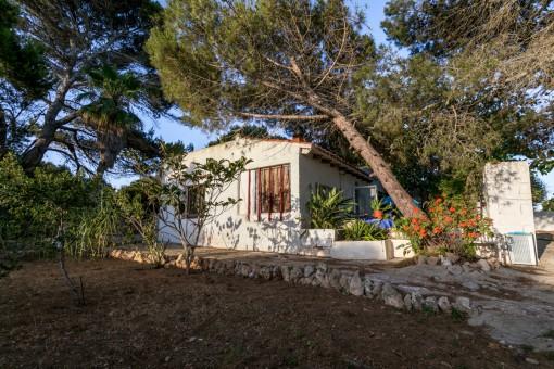 Renovierungsbedürftiges Haus mit bewaldetem Grundstück und Meerblick in der Nähe des Strandes von Punta Prima