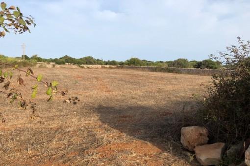 Eingezäuntes Grundstück von 4.000 qm mit kleiner Ruine in S'Uestra