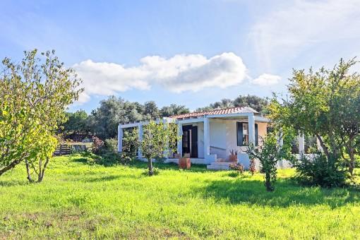 Schönes, kleines Landhaus mit Garten mit vielen Obstbäumen 5 Minuten von Alaior