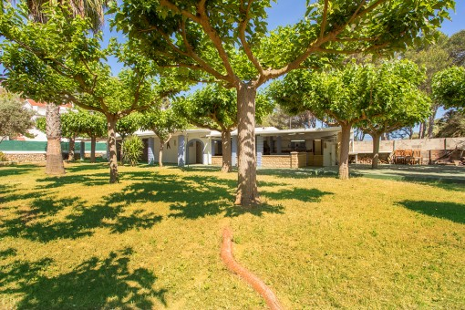 Sehr selten auf Menorca: Haus nur 50 m vom Strand von Santandria entfernt mit 215 qm Bebauung auf einem Grundstück von 1.844 qm